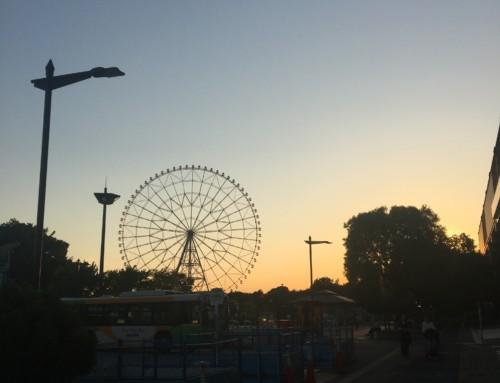 この夏行きたい!!